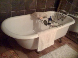 Claw foot Bathtub Refinishing Medusa, New York Albany County
